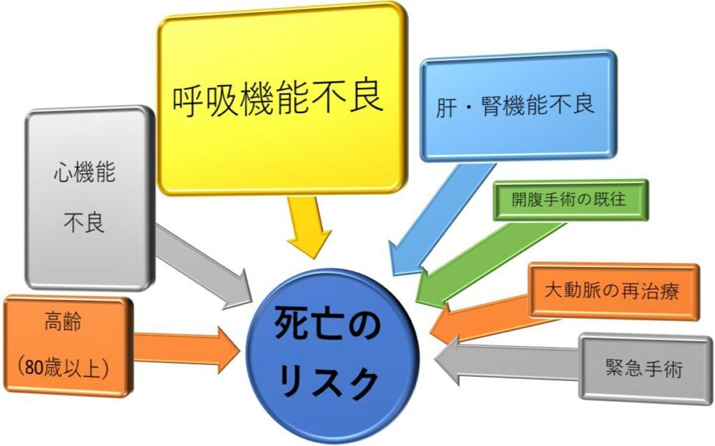 ステントグラフト治療のはらむ危険性(図5)
