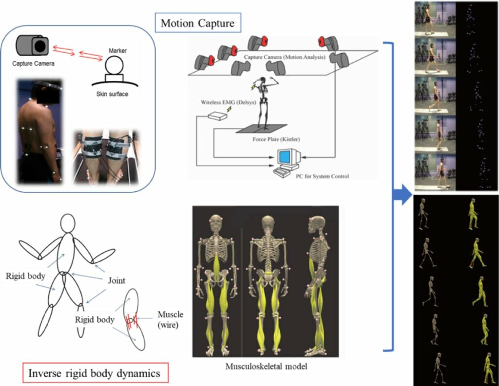Three-dimensional motion analysis using motion capture for patients with peripheral arterial disease: improvement after the bicycle exercise training